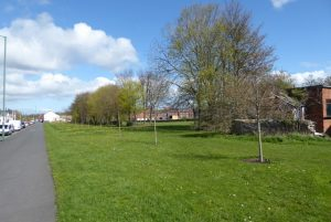 Photograph of Coxhoe Village Green North. Bright blue sky with fluffy clouds