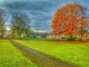 Photo of Village green in autumn