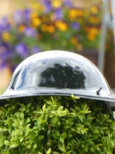 helmet on a bush